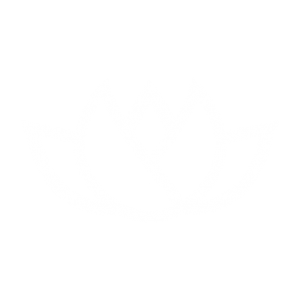 sow-reap-consult-logo-icon-02